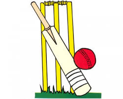 Junior Cricket opportunity
